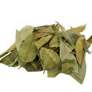 hojas-secas-de-graviola-guanabana-para-te-excelente-calidad-19739-MLC20177558220_102014-O